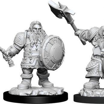 Male Dwarf Fighter