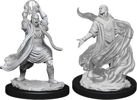 Male Elf Sorcerer